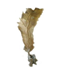 Natural wooden leaf stand deco