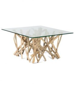 Brach coffee table